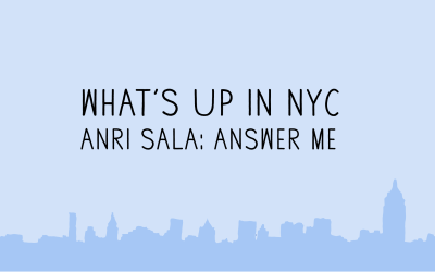 Anri Sala: Answer ME